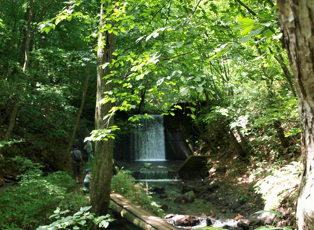 敷地奥にあるジェロニモの滝