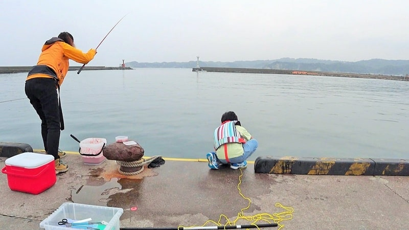 勝浦港で親子海釣り体験